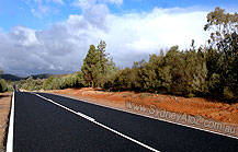Road to Warrumbungle National Park